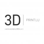 logo_3D Printlu.png