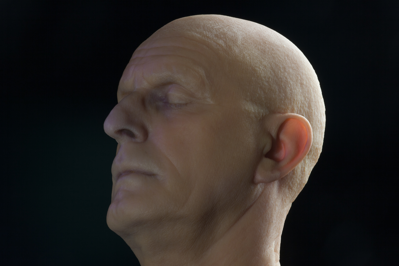 Der Tintenfisch als Schlüssel für den 3D-Druck