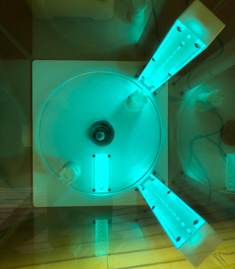 Elegoo Mercury-X-Cure Bodenbeleuchtung
